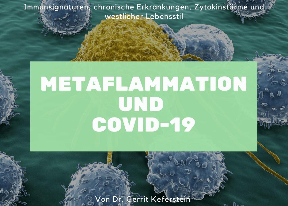 Metaflammation an der Schnittstelle von chronischen Erkrankungen und COVID-19