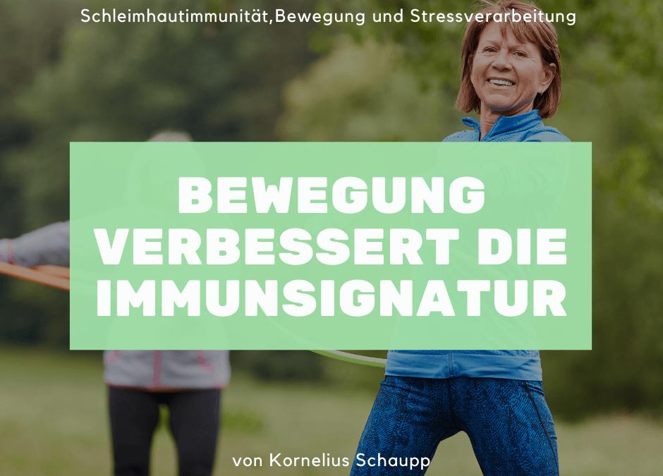 Wie Bewegung das Immunsystem optimiert