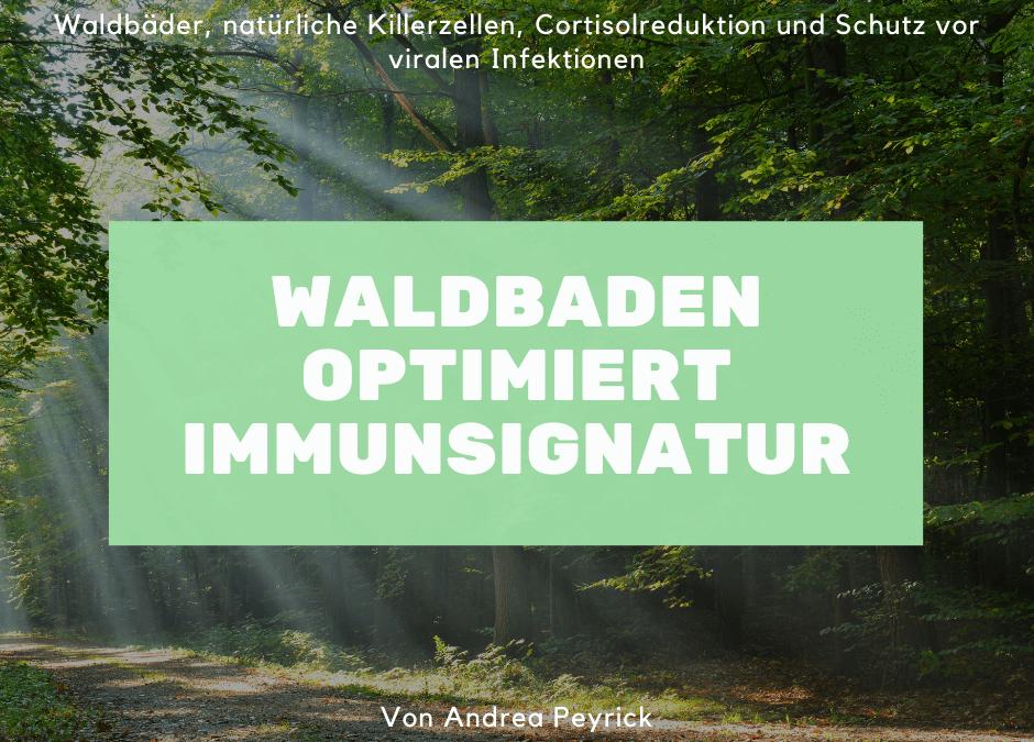Waldbaden und deine Immunsignatur